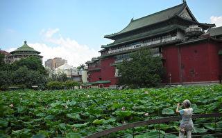 認識自然植物的教室──台北植物園