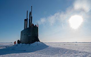 美潜艇破冰上浮遭北极熊攻击 士兵被逗乐了