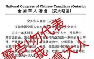 """华联会保共挺港""""国安法""""加拿大华人反弹"""