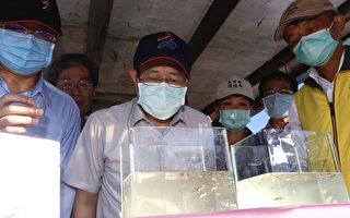进入登革热流行期 杨明州示范放养食蚊鱼