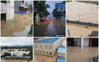 组图:南方8省暴雨成灾 52条河水位超警戒