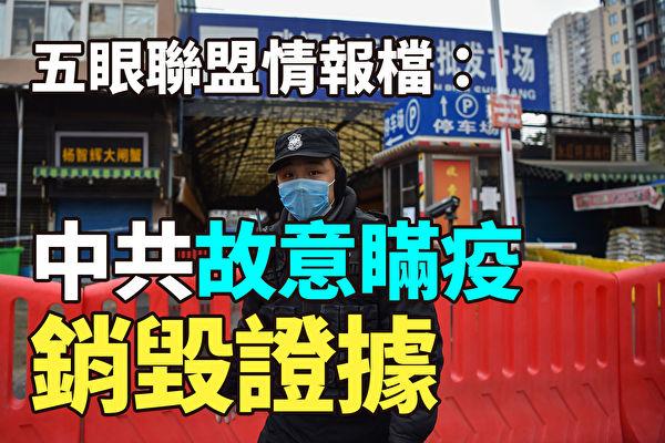 【纪元播报】五眼联盟情报:中共故意瞒疫 销毁证据