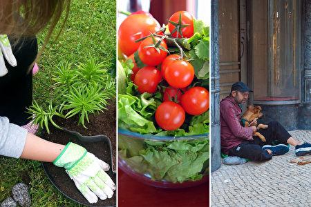 她5歲開始種菜9歲蓋房子 只為讓無家可歸者溫飽
