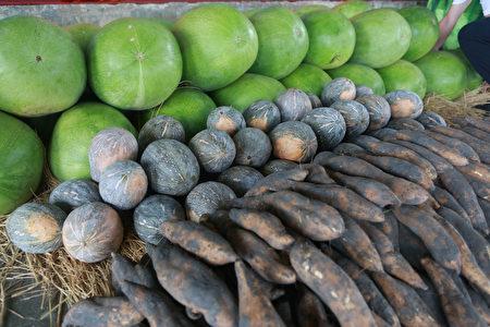 五結鄉優質農產品,大西瓜、南瓜及地瓜等上市了。