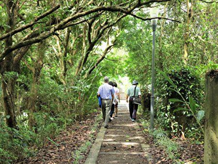 沿著南段橋步道往上行,還能找到昔日的鐵道枕木步道。
