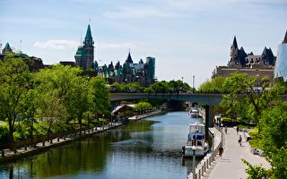 控疫得力 渥太華市府有望加快重開步伐