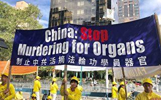 奧地利比利時發聲  譴責中共活摘人體器官