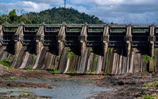 组图:波多黎各干旱 水库干涸作物欠收