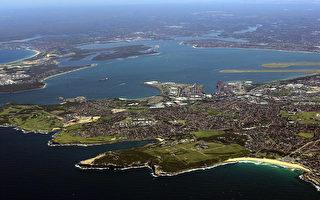 自然灾害使悉尼沿海 生态系统遭受严重破坏
