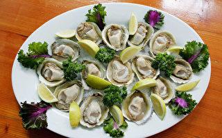 健康警告:基督城附近贝类发现生物毒素