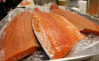 【一線採訪】三文魚揹鍋 經銷商欲哭無淚