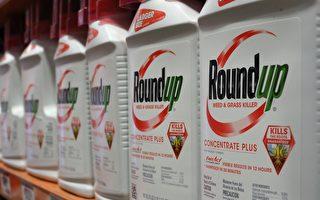Roundup除草剂恐致癌 墨尔本多地停用