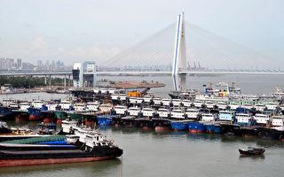 谢田:为什么海南自由贸易港会成四不像?