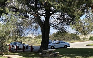 洛市議會通過調研:如何刪警局1.5億資金