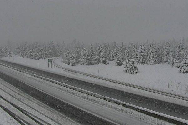六月飞雪 美国洛矶山北部雪深一英尺