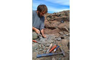 阿根廷发现巨型恐龙化石
