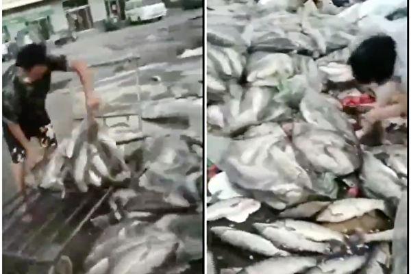 北京疫情三文鱼躺枪 各地样本检测均为阴性