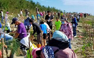 留下「好美」沙灘  嘉義林管處攜手教會種樹