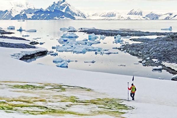 南极出现大量绿色的雪 从太空中都看得到