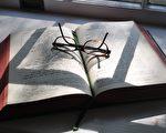 以色列聖經密碼專家解密:川普會連任