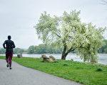 松浦弥太郎在43岁陷入职场困境,当开始尝试跑步后,甩掉了疲劳、压力,人生也重启。示意图。(Shutterstock)