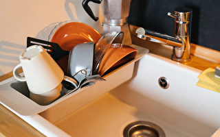 別讓烘碗機成「黴菌培養機」烘碗前先做1件事