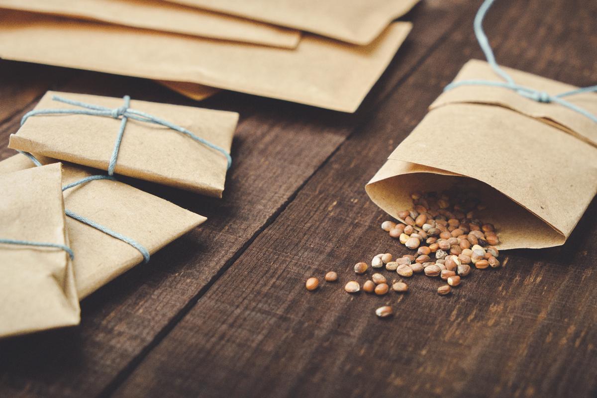 治痰是蘿蔔籽的強項,被元朝著名醫家朱震亨稱為:「有推牆倒壁之功。」但是,氣虛者則要慎用,據《本草從新》說:「虛弱者服之,氣喘難布息。」(Shutterstock)