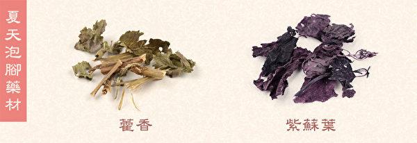 夏天泡脚,建议使用适量藿香和紫苏叶。(Shutterstock/大纪元制图)