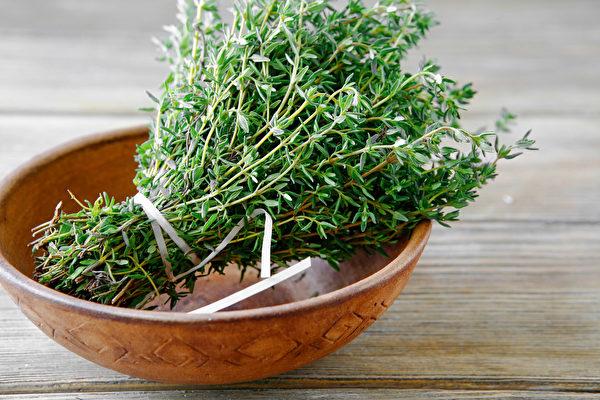 百里香能夠抗黴菌,改善口臭和肺部感染,可作為精油或藥草使用。(Shutterstock)
