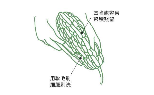 食用苦瓜、小黃瓜等瓜類前,用軟毛刷仔細刷洗去除農藥。(商周出版提供/大紀元後製)