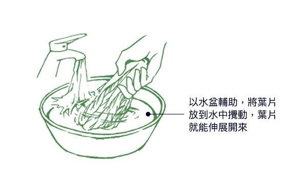 空心菜、茼蒿、地瓜叶、九层塔等小叶绿色蔬菜,应在水盆中冲洗,洗去表面的农药。(商周出版提供/大纪元后制)