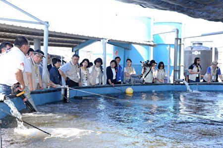 北市府团队参观台湾鲷生智能养殖场。