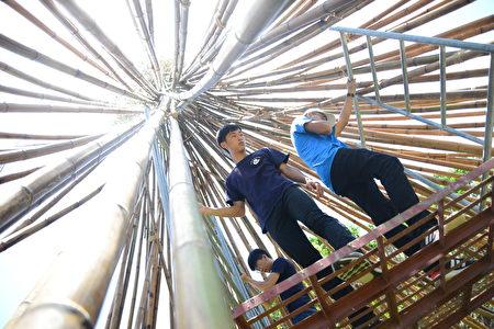 海声华德福高中部学生在鹰架上为竹构装置艺术工作。