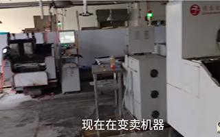 張菁:中小型服裝企業老闆的一肚子苦水
