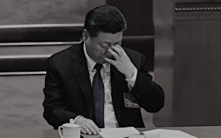 """习近平被指是中共灭亡的""""总加速师"""""""