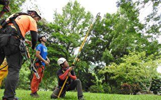 提升高危險救援技能 南投消防特訓樹攀救援