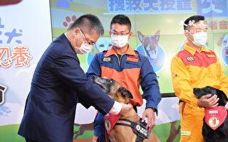 台湾搜救犬国际认证亚洲第一 徐国勇亲自授阶