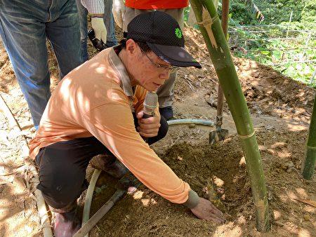 农民说,先仔细观察土壤的裂痕,裂缝代表底下有竹笋。