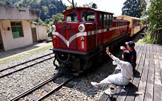阿里山林业铁路首次开放暑假专车 团体订票