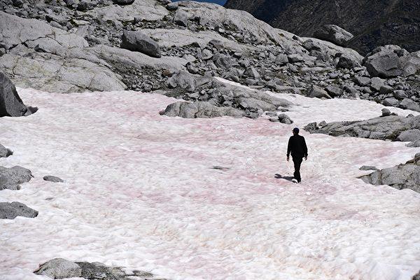 2020年怪事多 意大利冰川变粉红色