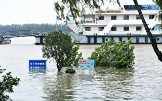 【翻墙必看】分析:习为何缺席洪水灾区