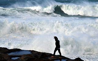 惡劣天氣襲擊新州 悉尼海灘巨浪高達11.5米