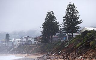 新州遭強風暴雨襲擊 悉尼局部地區暴發洪水