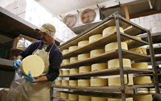 可能感染李斯特菌,系列奶酪產品被召回