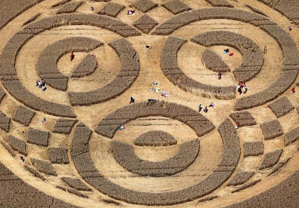 德國農田驚現神秘麥田圈 直徑100米