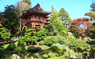 舊金山金門公園日本茶園重新開放