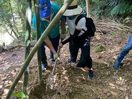 民众可以亲自体验挖竹笋的辛劳及乐趣。