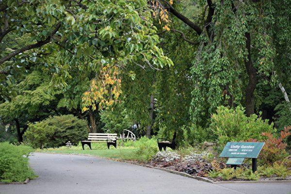 纽约市第四阶段重启 皇后区植物园今天重新开放