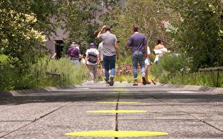 夏季又一去處 紐約高線公園重新開放