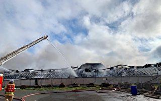 墨尔本电池厂爆炸引发大火